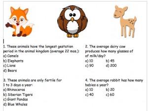 Animal Babies Quiz