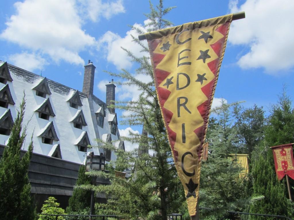 Cedric flag