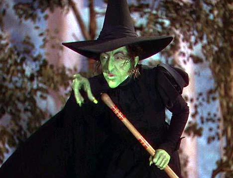 Wizard of Oz Wicket Witch
