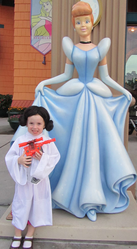 Leia-Cinderella