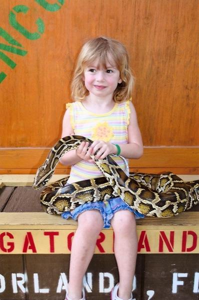 Gatorland snake