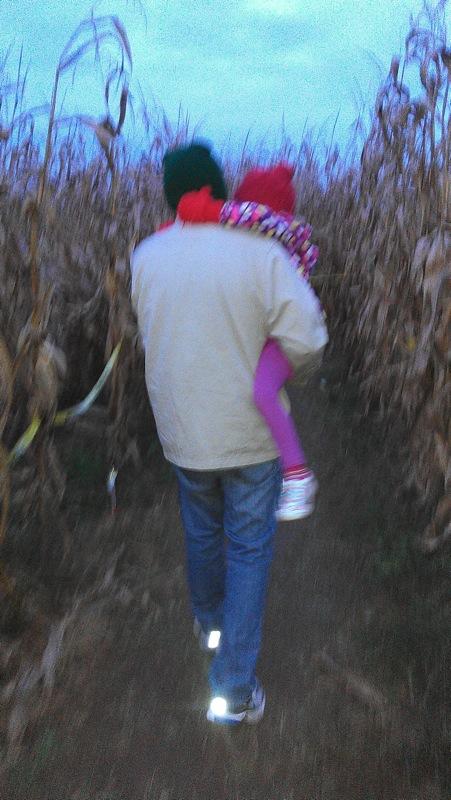 Pennsylvania-cornmaze