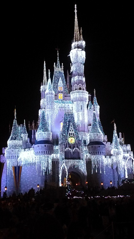 Cinderella's Castle, Dec. 2012