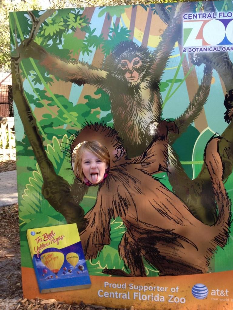 E-monkey-zoo