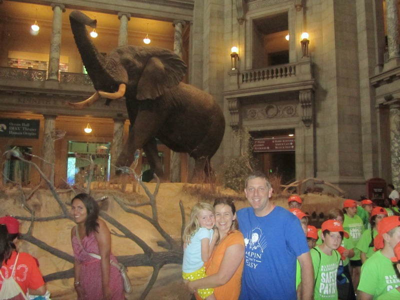 Natural History-fam w elephant
