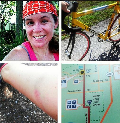 Bike trail collage