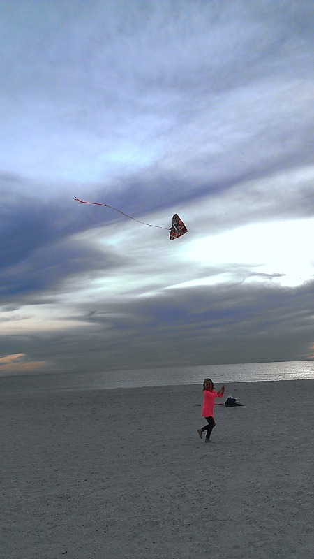 E flies a kite