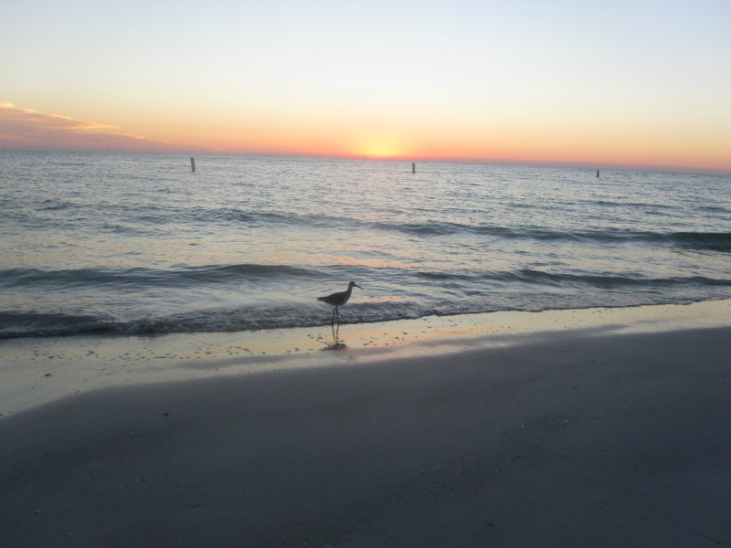 Madeira Beach sunset