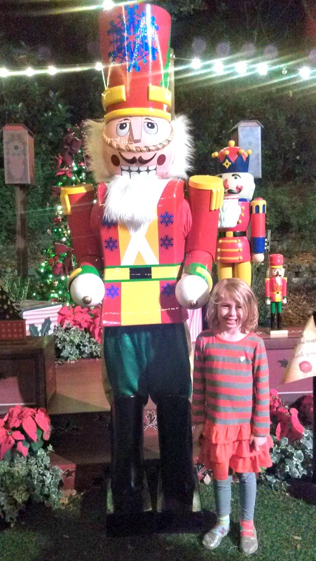 E and the nutcracker