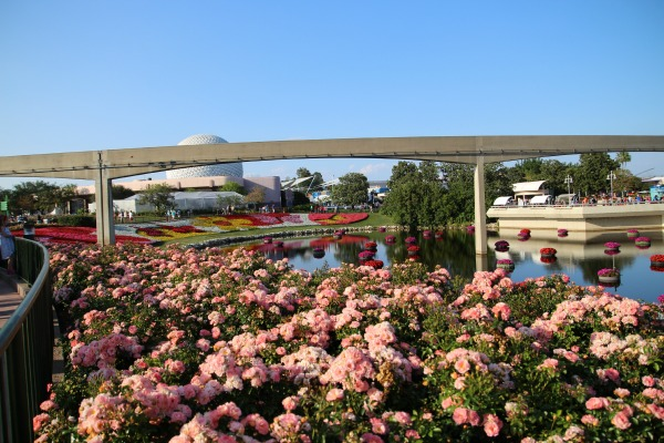Epcot-Flower and Garden